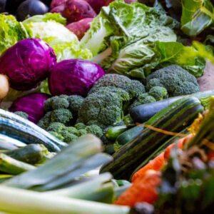 Food Waste: What is Food Waste?