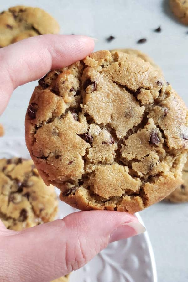 close up of a peanut butter chocolate chip cookie