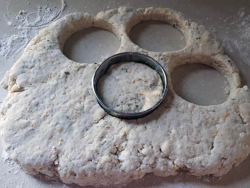 scone dough being cut into circles