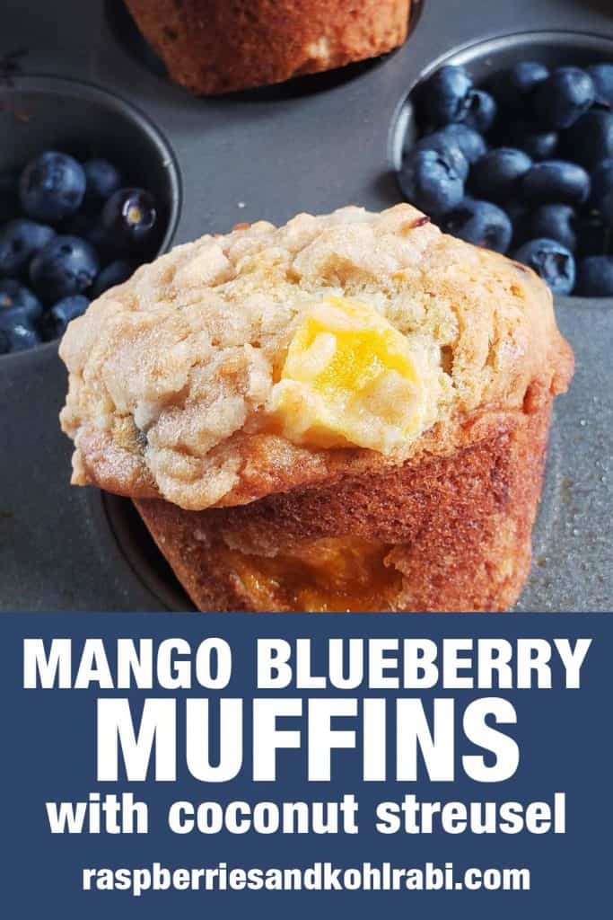 mango blueberry muffin in a muffin tin