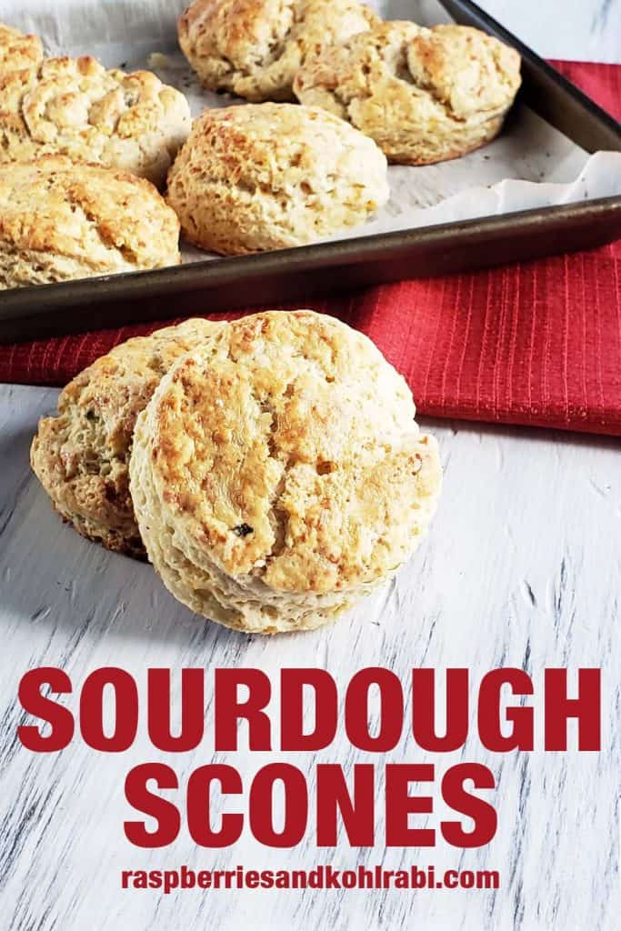 sourdough scones on a white wood background
