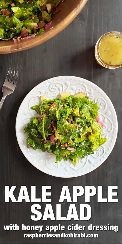 kale salad on a white plate on a dark background