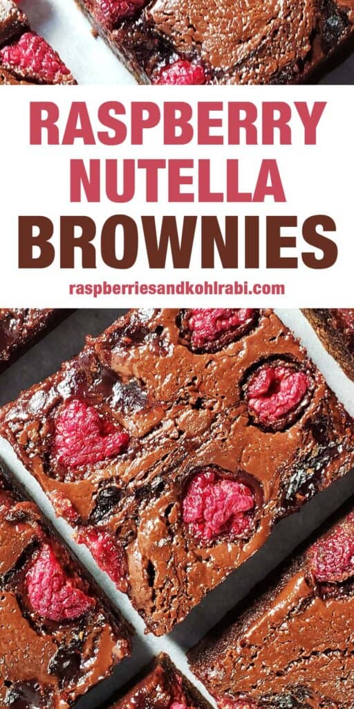 raspberry nutella brownies on a white surface